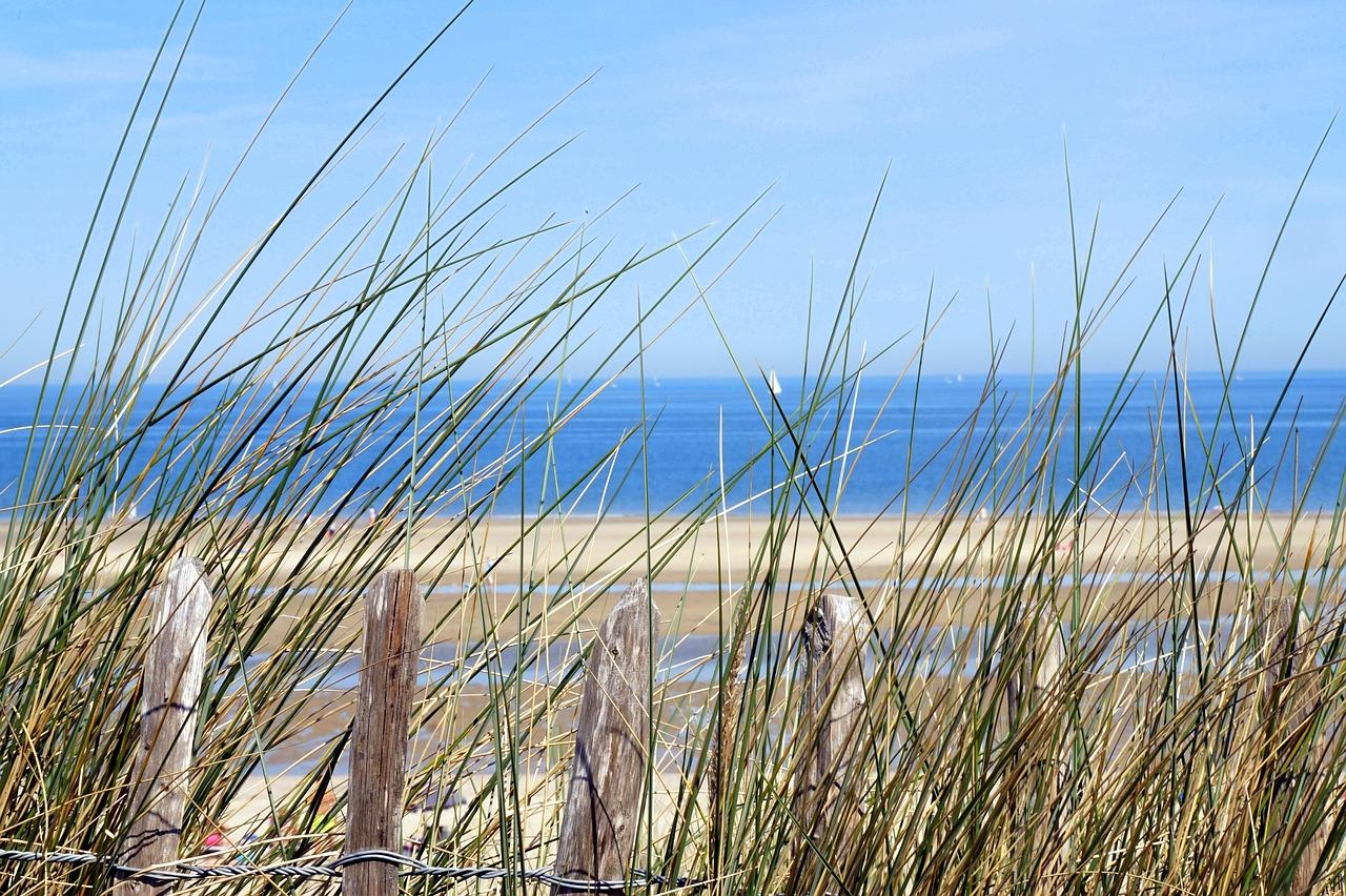 Transformation & Persönlichkeitsentwicklung an der Nordsee