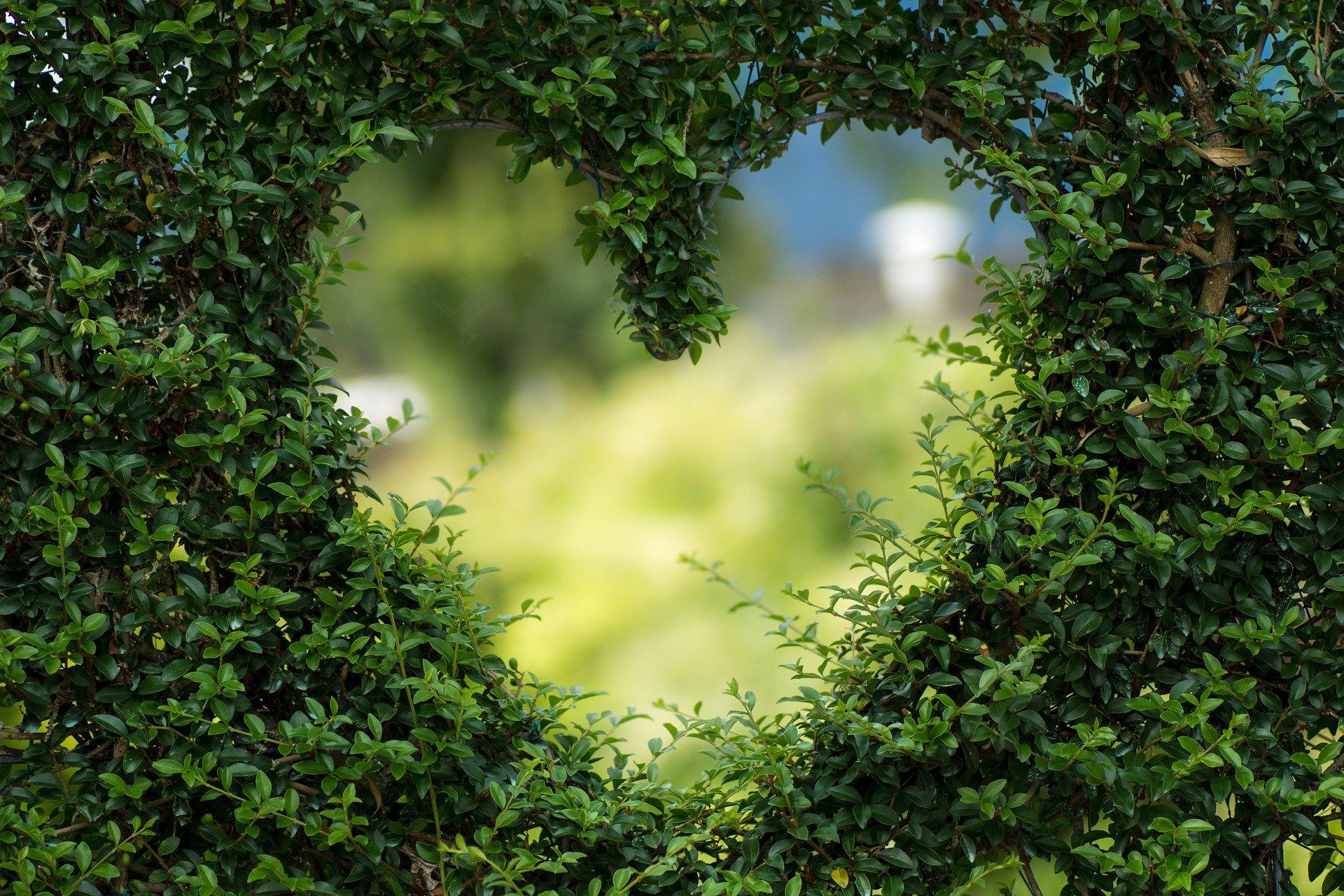 Herz als Symbol für die Anerkennung und Liebe